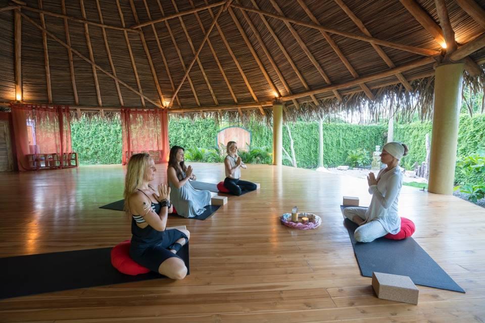 buena vibra collective yoga nosara
