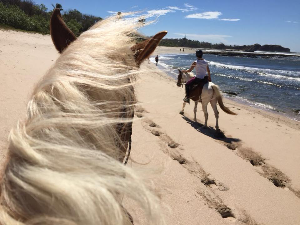 horse riding nosara